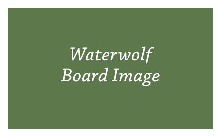 BoardPicture